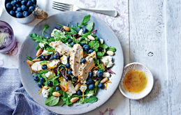 Chicken and Blueberry Salad