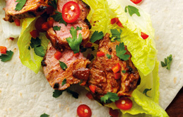 Indian Curried Lamb with Sour Cream Wrap