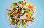Chicken, Coconut and Mango Salad