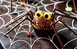 Chocolate Orange Spider Cupcakes