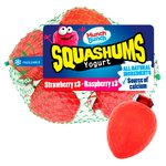 Munch Bunch Raspberry & Strawberry Squashums