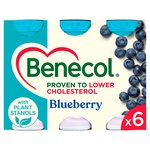 Benecol Blueberry Smooth Yogurt Drinks