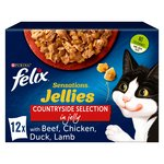 Felix Sensations Meat in Jellies
