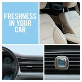 Febreze Car Clip Air Freshener Blossom & Breeze
