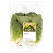 Morrisons Organic Little Gem Lettuce