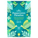 Morrisons Pure Peppermint Tea