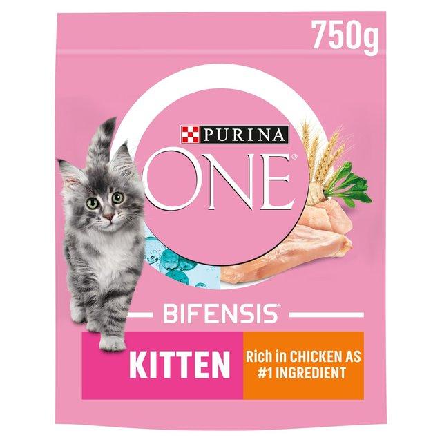 Purina Junior Cat Food