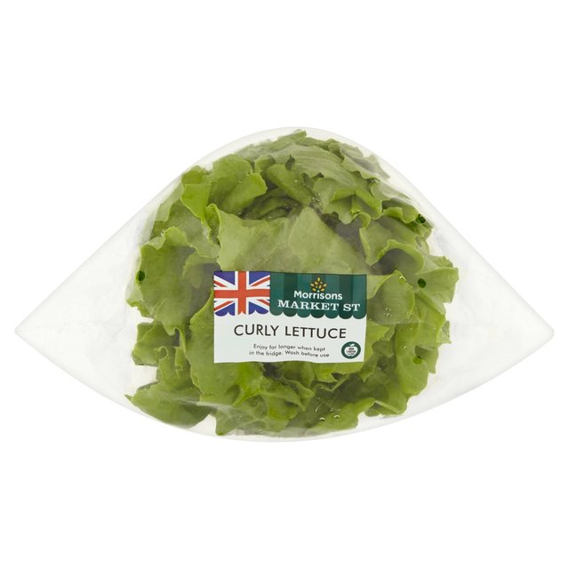 Morrisons Curly Lettuce