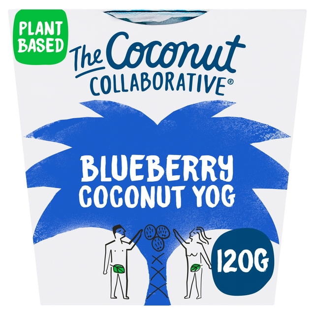 The Coconut Collaborative Blueberry Yogurt