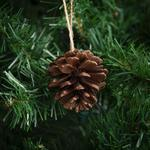 Morrisons Pine Cone Decorations