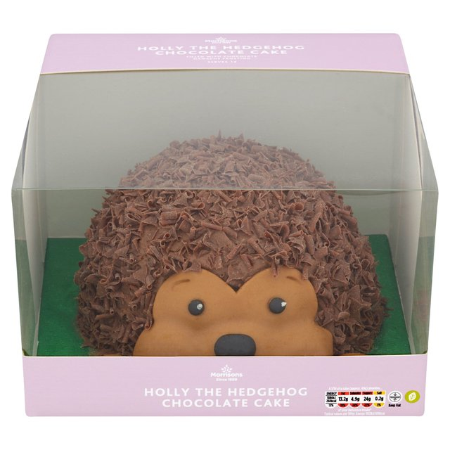 Fantastic Morrisons Hedgehog Cake Morrisons Funny Birthday Cards Online Inifodamsfinfo
