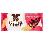 Squirrel Sisters Raspberry Ripple Raw Energy Bar