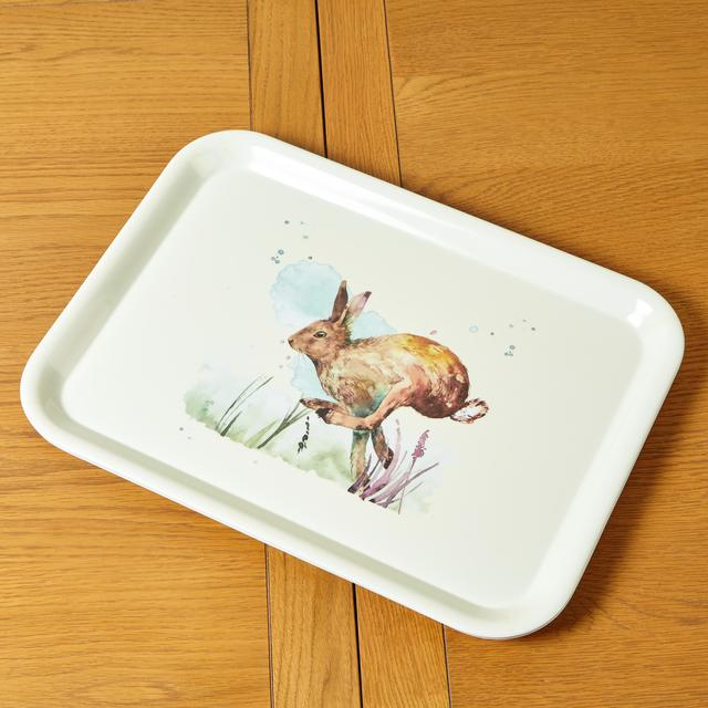 Morrisons Woodland Friends Tray Large