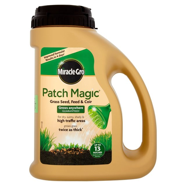 pet patch grass seed