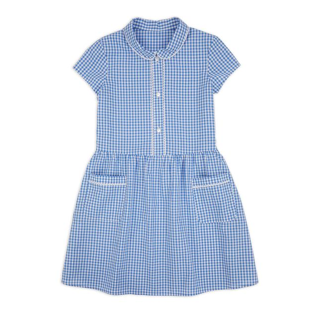 Nutmeg Blue Classic Gingham Dress