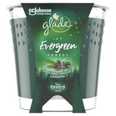 Glade Candle Evergreen Forest