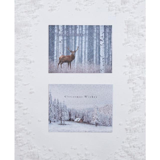 Morrisons Stag & Forest Scene Christmas Cards