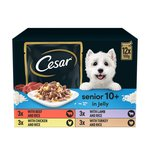 Cesar Senior 10+ Deliciously Fresh Favourites In Jelly Pouch