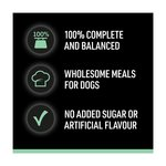 Cesar Senior 10+ Mixed Selection In Sauce