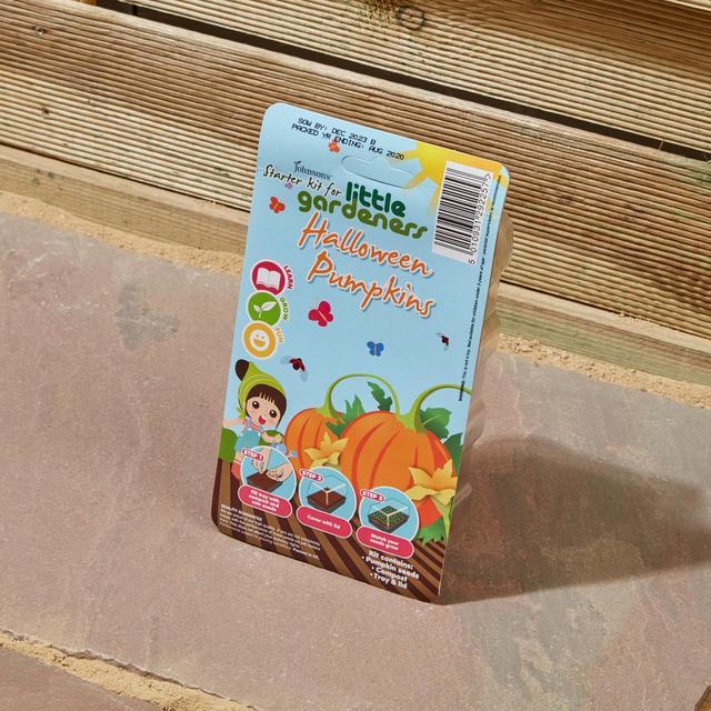 Johnsons Starter Kit For Little Gardeners Halloween Pumpkins